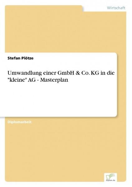 """Umwandlung einer GmbH & Co. KG in die """"kleine"""" AG - Masterplan"""