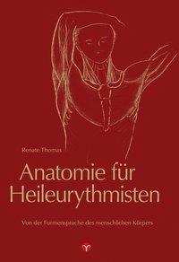 Anatomie für Heileurythmisten