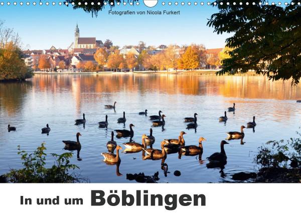 In und um Böblingen (Wandkalender 2020 DIN A3 quer)