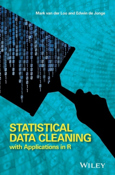 Statistical Data Cleaning with