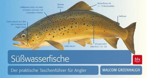 Süßwasserfische: Der praktische Taschenführer für Angler