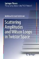 Scattering Amplitudes and Wilson Loops in Twistor Space