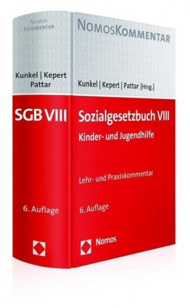 Sozialgesetzbuch VIII