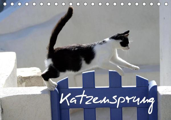 Katzensprung (Tischkalender 2020 DIN A5 quer)