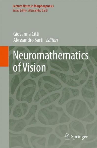 Neuromathematics of Vision