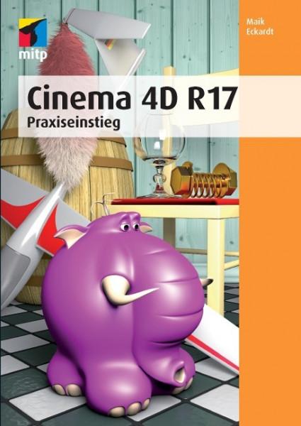 Cinema 4D R 17