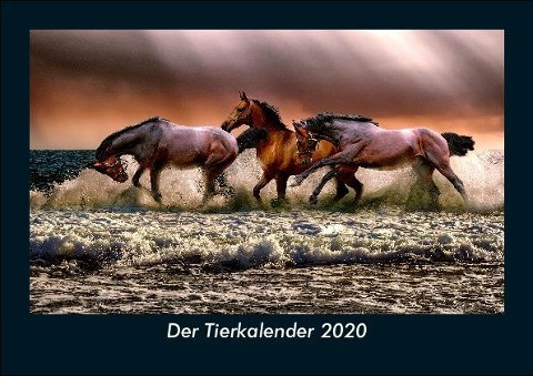 Der Tierkalender 2020 Fotokalender DIN A5