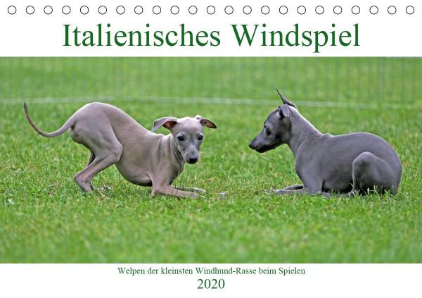 Italienisches Windspiel (Tischkalender 2020 DIN A5 quer)