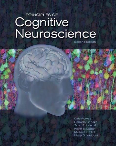 Principles of Cognitive Neuroscience