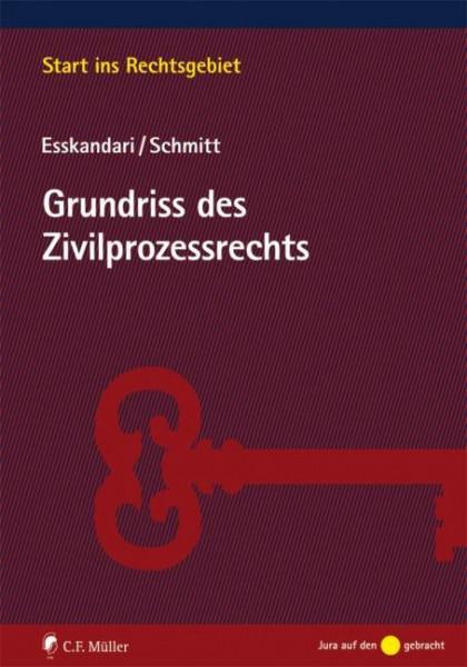 Grundriss des Zivilprozessrechts