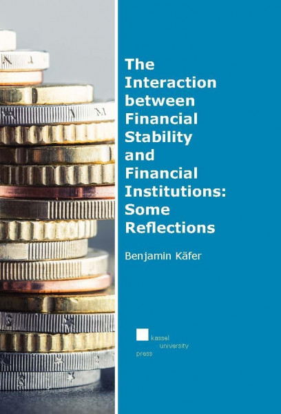 The Interaction between Financial Stability and Financial Institutions: Some Reflections