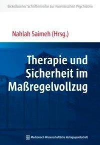 Therapie und Sicherheit im Maßregelvollzug