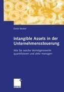 Intagible Assets in der Unternehmenssteuerung