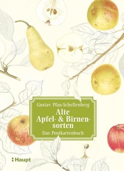 Alte Apfel- & Birnensorten - Das Postkartenbuch