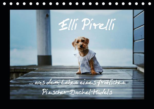 Elli Pirelli... aus dem Leben eines fröhlichen Pinscher-Dackel-Mädels (Tischkalender 2020 DIN A5 que
