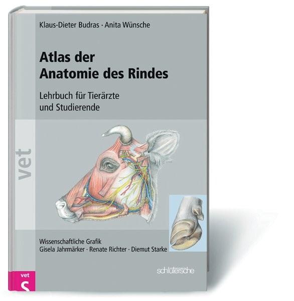 Klinische Anatomie des Rindes: Supplement zur klinisch-funktionellen Anatomie. Atlas mit Supplement