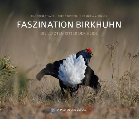 Faszination Birkhuhn