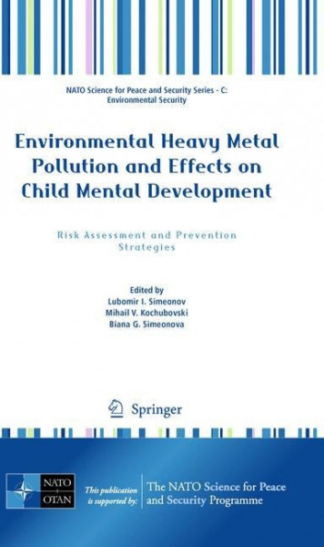 Environmental Heavy Metal Pollution and Effects on Child Mental Development