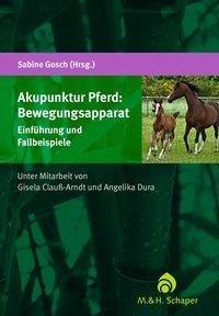 Akupunktur Pferd: Bewegungsapparat