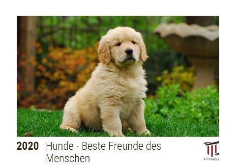 Hunde - Beste Freunde des Menschen 2020 - Timokrates Kalender, Tischkalender, Bildkalender - DIN A5